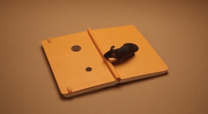 arte-no-escritorio-moleskine